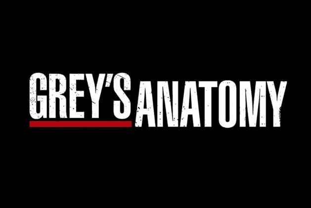 anatomia grey logo