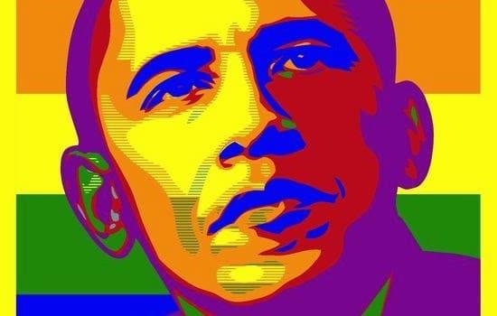 Gay For Obama, Hay una lesbiana en mi sopa