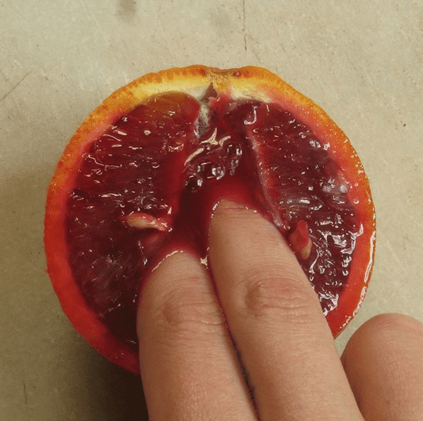 El arte frutal de Stephanie Sarley