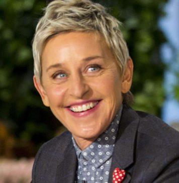 Ellen Degeneres 356x364, Hay una lesbiana en mi sopa