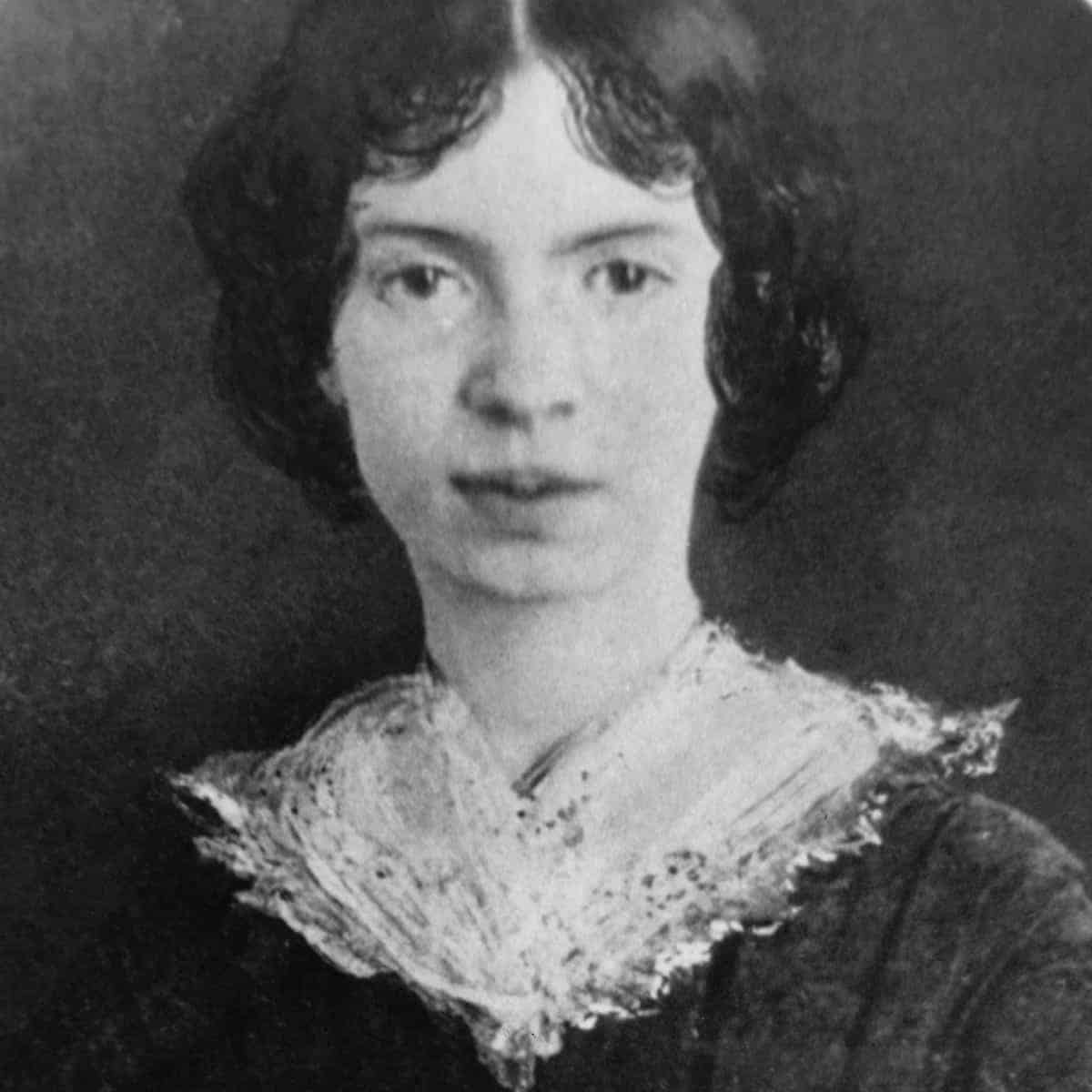 Emily Dickinson Resizedjpg, Hay una lesbiana en mi sopa