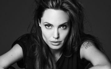 Angelina Jolie 356x223, Hay una lesbiana en mi sopa