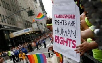 Transgender Human Rights 356x221, Hay una lesbiana en mi sopa