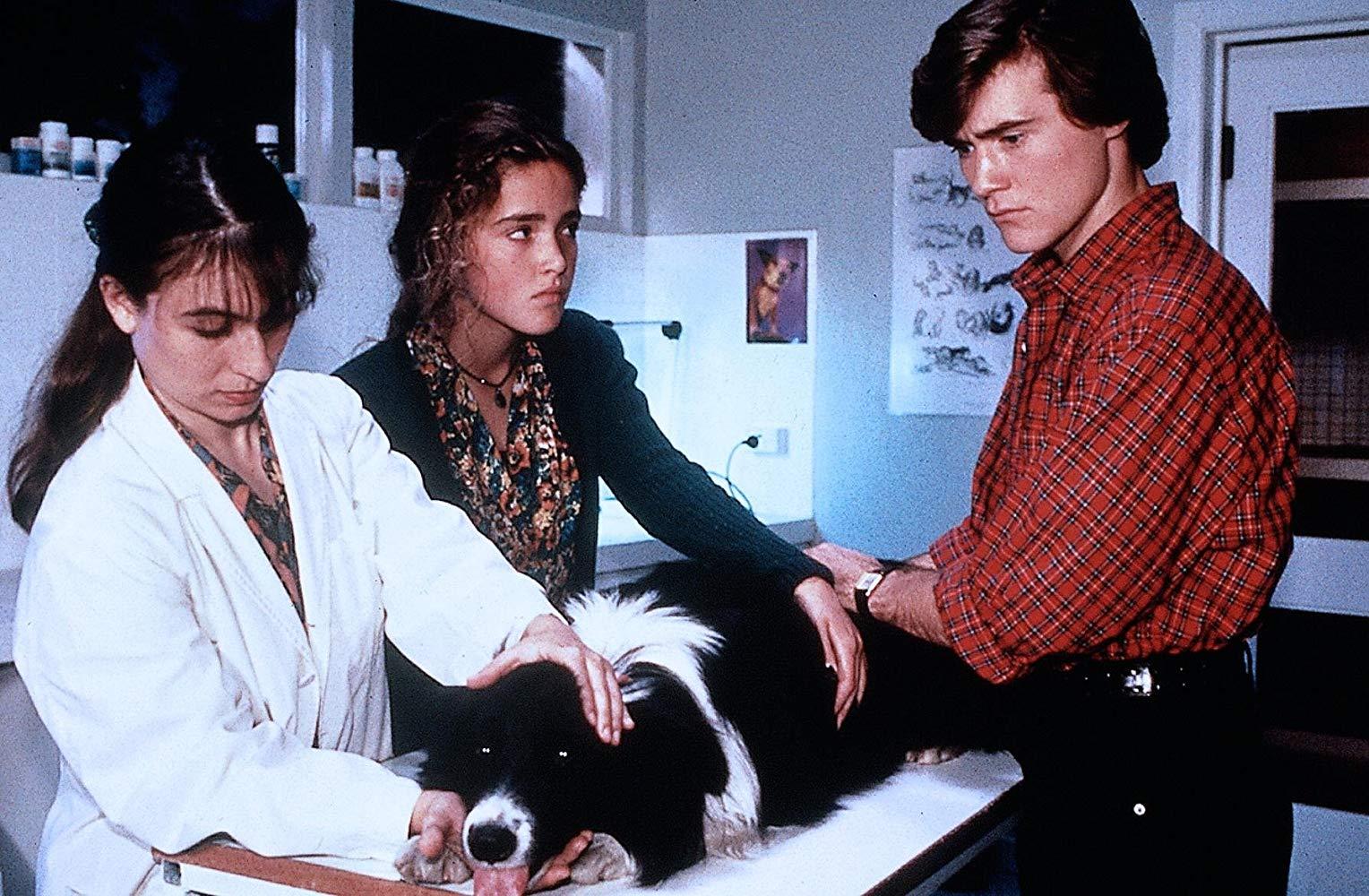 dalas doll 3 - La película perdida con Sandra Bernhard seduciendo a Rose Byrne ve la luz